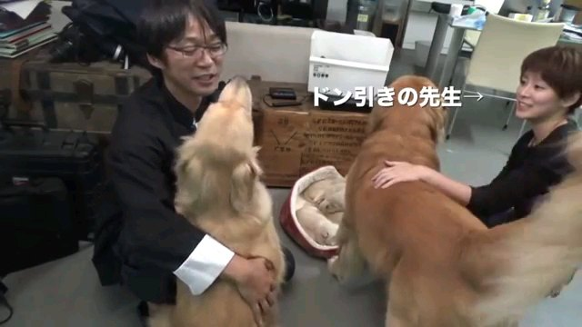 ドン引き~字幕