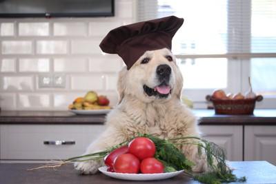 シェフの帽子をかぶった犬と野菜