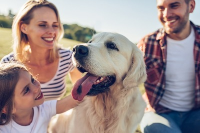 家族と犬のアップ