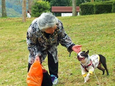 犬とおばあさん