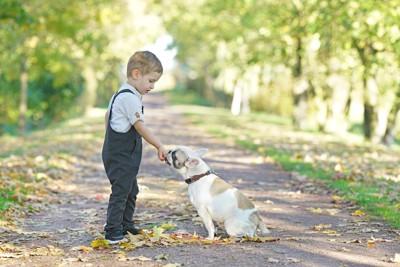 子どもにオヤツをもらう犬