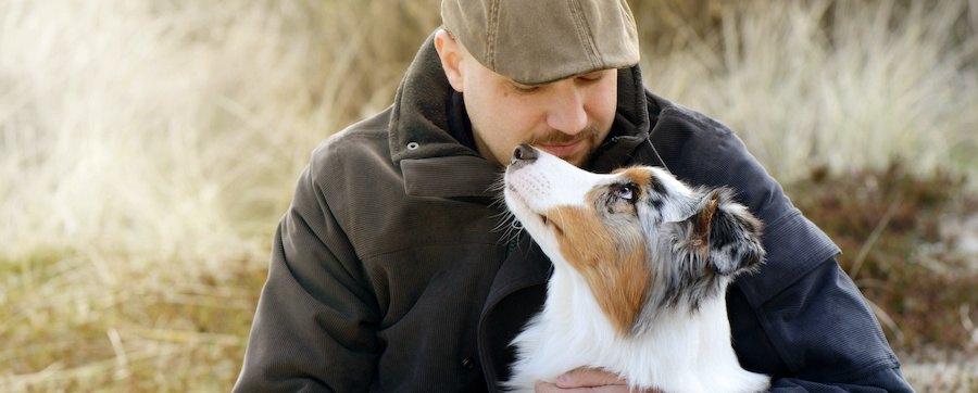 見つめ合う犬と男性