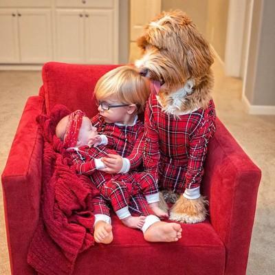 赤ちゃんと犬と子供