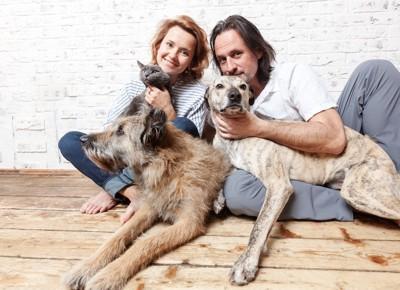 笑顔のカップルと猫と2匹の犬