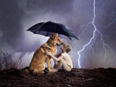 雷と犬と少年