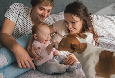 赤ちゃんに近づく犬と見守る両親