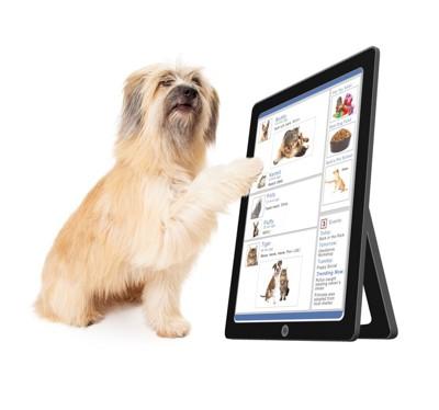 #タブレットに触る犬#