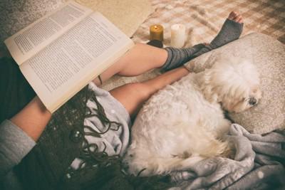飼い主に体をくっつけて眠る犬