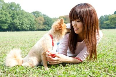 芝生の上で見つめ合う飼い主と犬