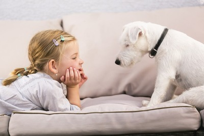 犬と女の子
