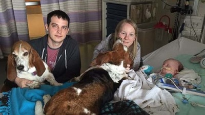 ホール夫妻と赤ちゃんと犬