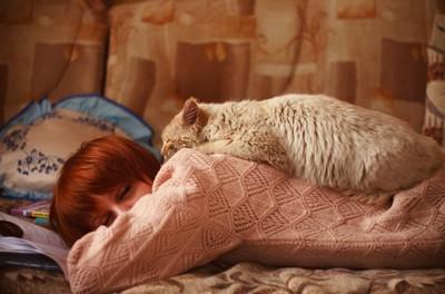 うつ伏せで眠る女性の背中で眠る猫