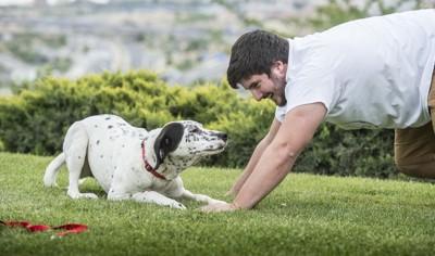 楽しそうな人と犬
