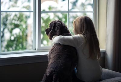 窓の外を見る犬と女の子