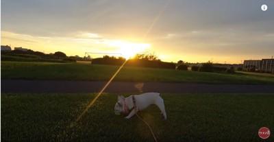 日が落ちてきました