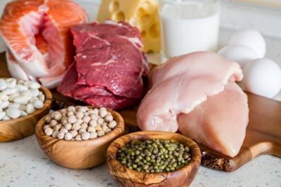 タンパク質な食材
