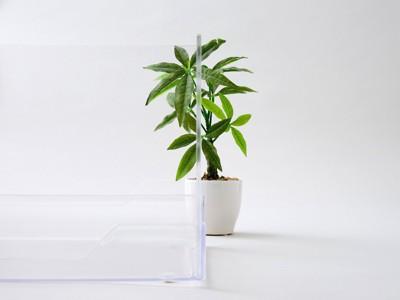 透明なので向こうの観葉植物が見えるクリアレット2