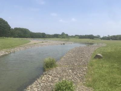 浅い小川と芝生エリアも