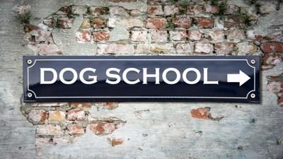 dogschoolの看板