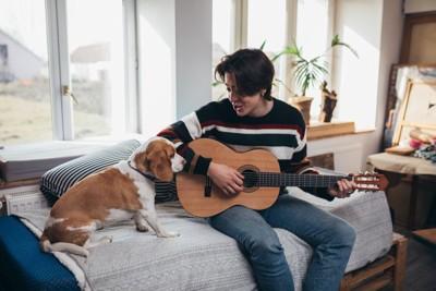 音楽を楽しむ人と犬