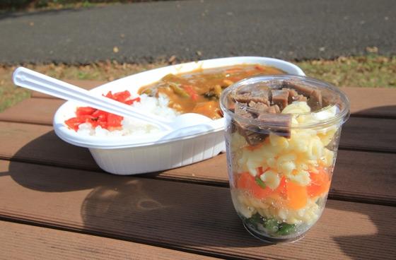 カレーとわんこご飯の写真