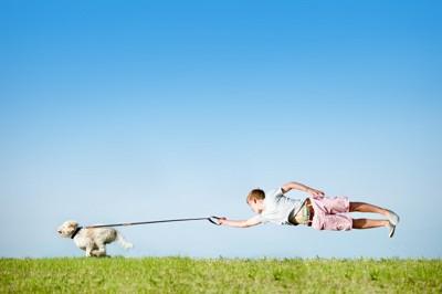 走る犬と引っ張られる少年