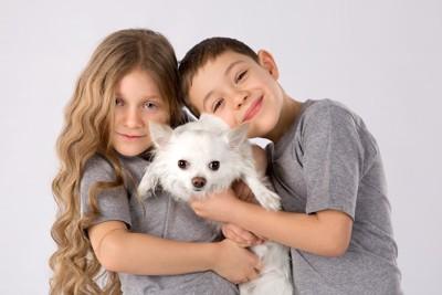 チワワと2人の子供
