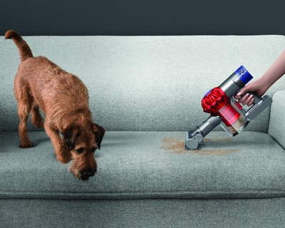Dyson V6 Top Dogと犬
