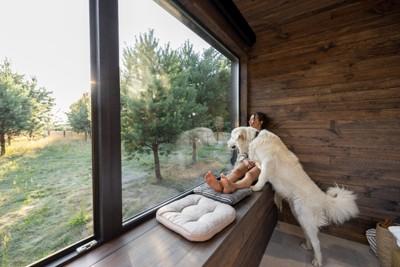 窓の外を見ている女性と犬