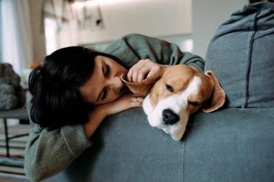拗ねる犬と慰める人