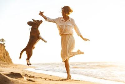 ジャンプする女性と犬