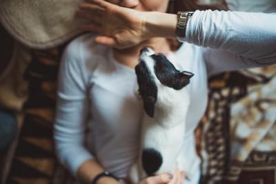 横になる女性の上に乗って顔を舐めようとする犬