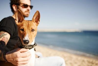 サングラスをかけている飼い主と犬
