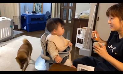 離乳食をとる赤ちゃん