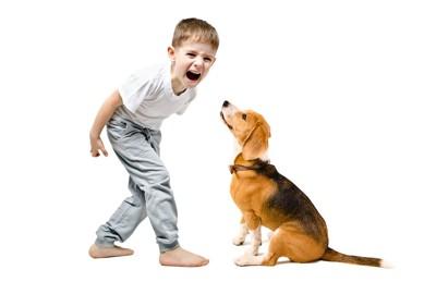 大声で叫ぶ男の子と座る犬