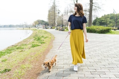 ダックスフンドと散歩する女性