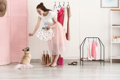 服を着る犬と女性