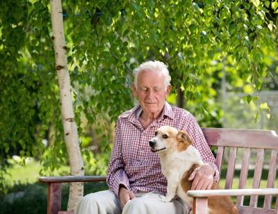 ベンチに座るおじいさんとコーギー犬