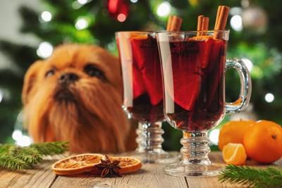 クリスマス料理を目の前にする犬