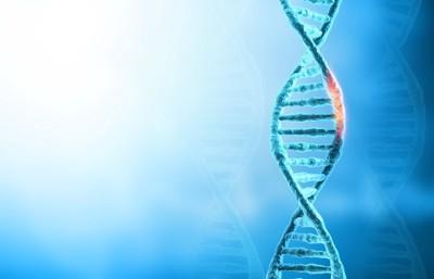 遺伝子のイラスト