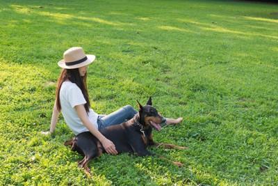 芝生で寛ぐ女性とドーベルマン