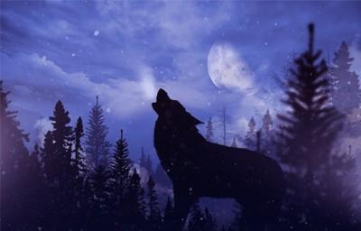 月夜に吠える狼犬