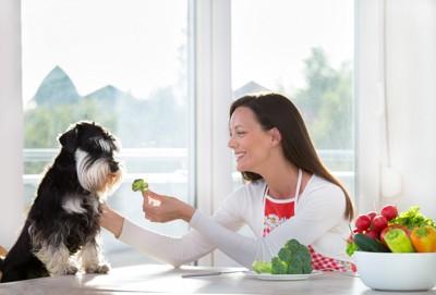 犬にブロッコリーを与える人
