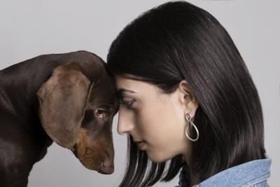 おでこを付け合う犬と人