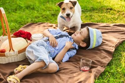 犬とピクニックにきた少年