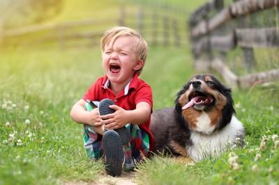泣いている子供と犬