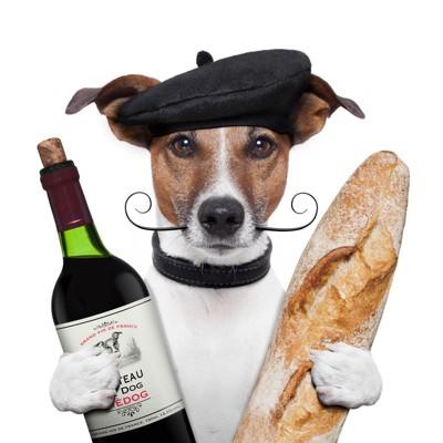ワインとフランスパンを持った犬