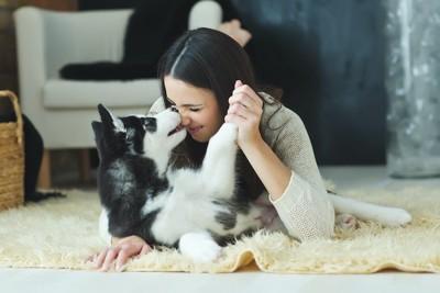 笑顔の女性と部屋でじゃれ合う犬