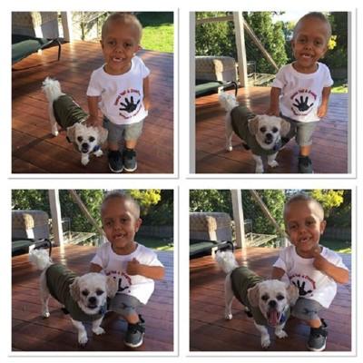 子供と犬の笑顔の写真4分割
