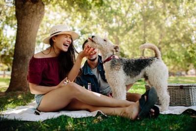 カップルと遊ぶ犬